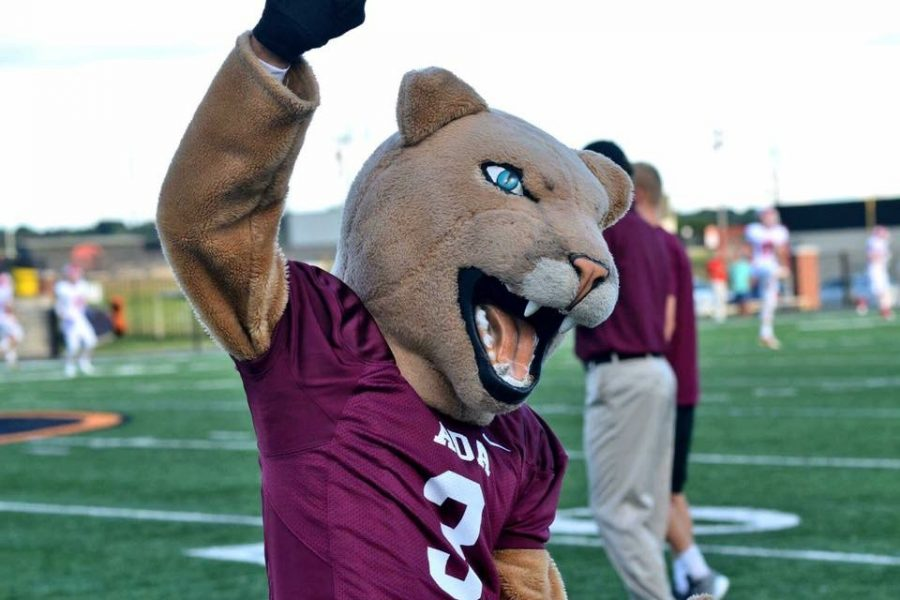 Mascot gets excited for cougar football.