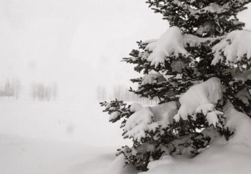 Crested Butte, Colorado - Winter