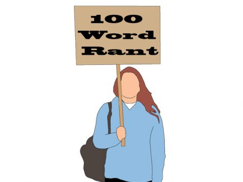 100 Word Rant: Factionalism in Politics