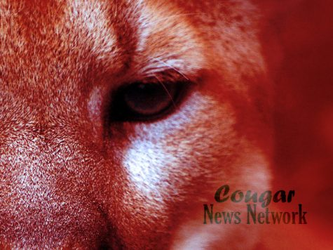 Check out The Cougar Call