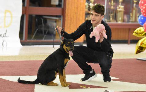 RUSH Week dog show