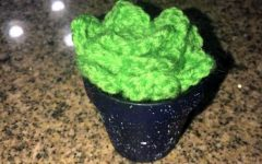 Crochet How-To: Crochet Succulent