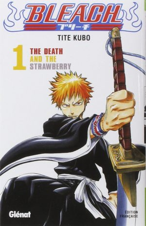 the picture shows ichigo as a soul reaper