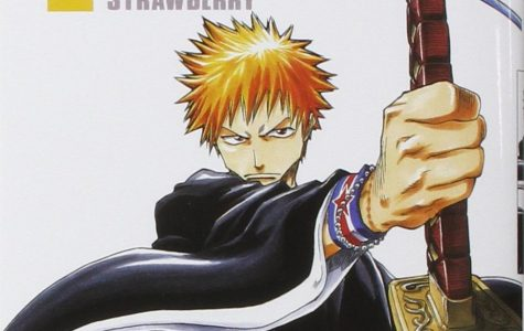 Bleach, one of the big three shonen and it hit the mark for me